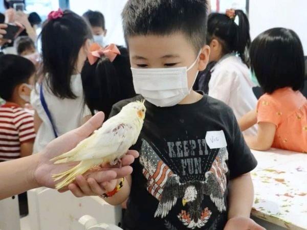 鹿學Deer Kids - 動物觀察課