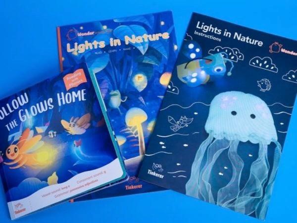 Tinkerer Lights In Nature
